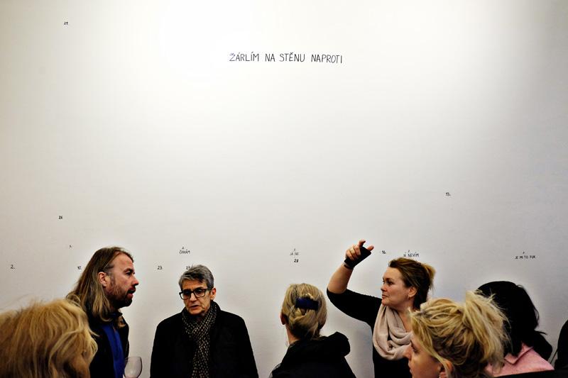 Artist Tomáš Vaněk's opening night at the Galerie Havelka.