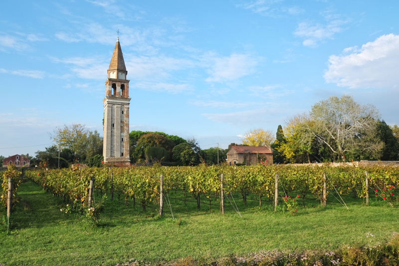 Venissa Wine Resort reviews.