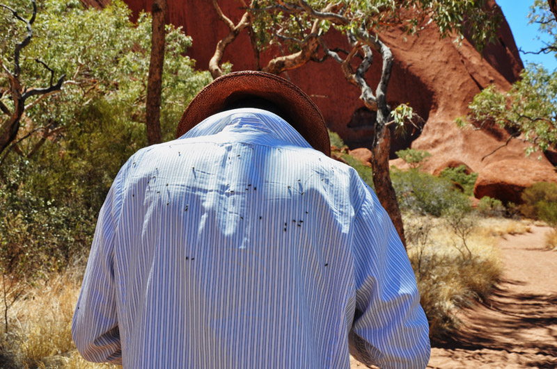 Voyages Ayers Rock Resort reviews and Uluru travel tips by White Caviar Life.